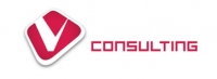 V Consulting