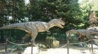 """Откриха изложбата """"Живите динозаври"""" в морската градина на гр. Варна"""