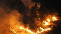 55 пожара в близост до жп линиите за последните месеци